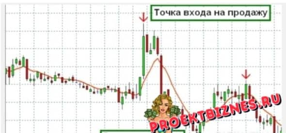 Forex destination